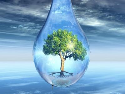 טיהור מים